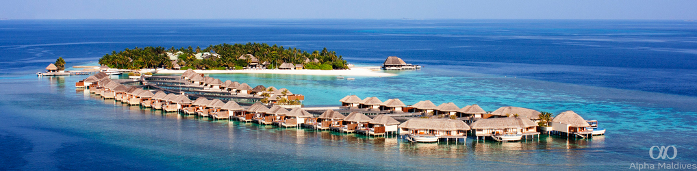 Alpha Maldives Blog