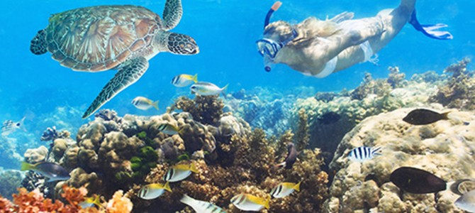 The Luxury Maldives Resorts With Best House Reefs