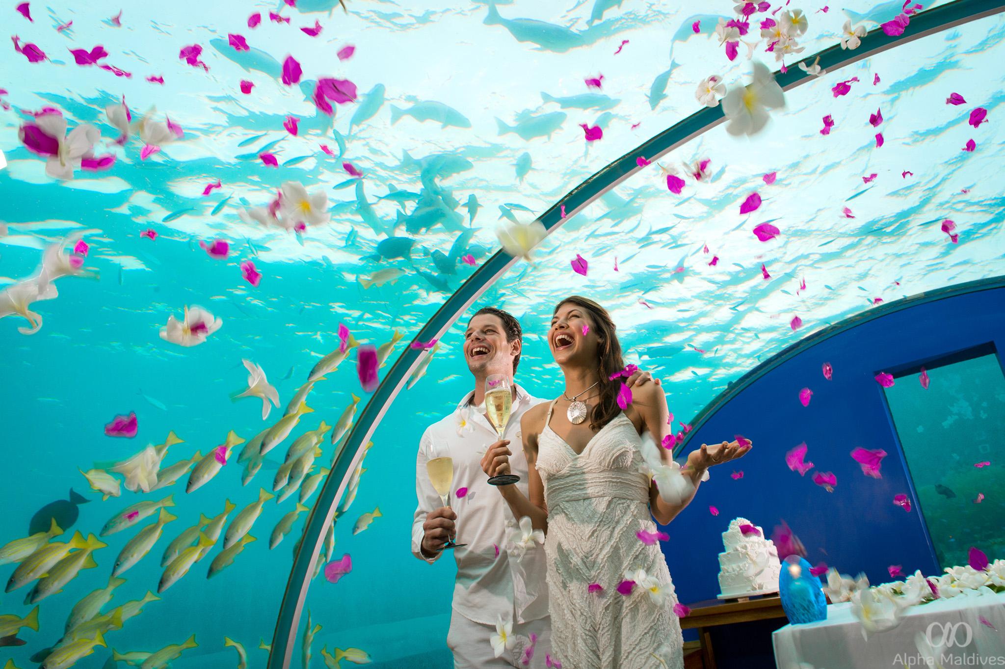 Tripadvisor maldives wedding