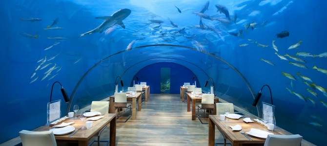 Underwater Dining in the Maldives