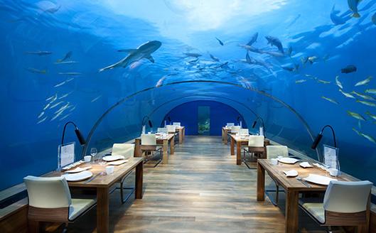Conrad Maldives_Ithaa Undersea Restaurant364564654